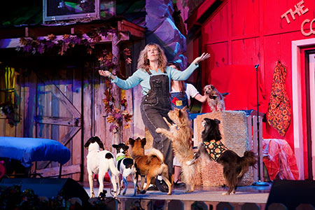 Photo of Dawn Goehring of Comedy Barn Canines. Photo Courtesy of Christine Romano, Rich Blessings Photography