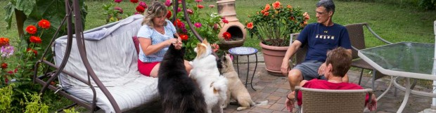 We Are Family: Are Your Dogs Family or Pets?